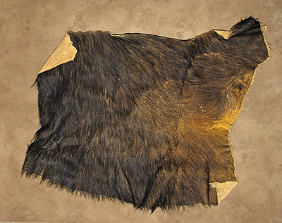 cape buffalo hide